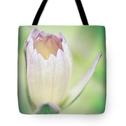 Waterlily Dreams 10 Tote Bag