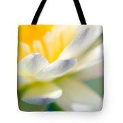 Waterlily Dreams 9 Tote Bag