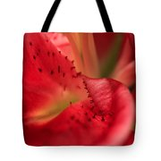 Watermelon Lily Tote Bag by Rachel Cohen