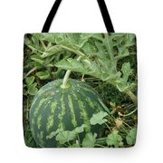 Dew On The Mellon Tote Bag