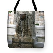Waterspout Garden Chateau Chaumont Tote Bag