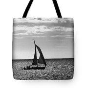 Waterway Bw Tote Bag