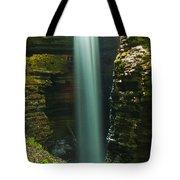Watkins Glen Bridal Veil Tote Bag