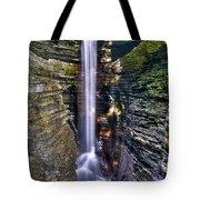 Watkins Glen Cascade Tote Bag