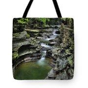 Watkins Glen Cascades Tote Bag