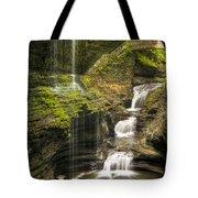 Watkins Glen Falls Tote Bag by Anthony Sacco