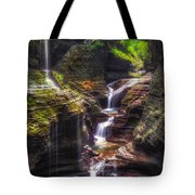 Watkins Glen Rainbow Falls Tote Bag by Mark Papke