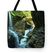 Watkins Glen Waterfalls Tote Bag