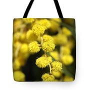 Wattle Flowers Australian Native Tote Bag