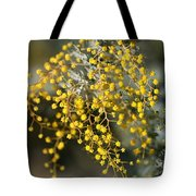 Wattle Flowers Tote Bag