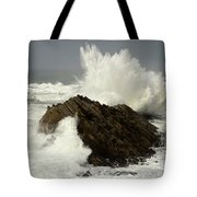 Wave At Shore Acres Tote Bag