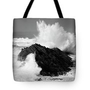 Wave At Shore Acres Bw Tote Bag