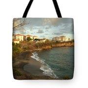 Waves And Sgu Tote Bag