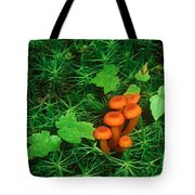 Wax Cap Fungi Tote Bag