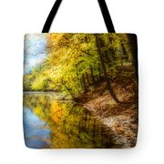 Waxen Autumn 3  Tote Bag