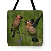 Waxwing Love.. Tote Bag by Nina Stavlund