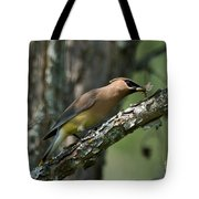 Waxwing Lunchtime Tote Bag