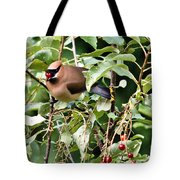 Waxwing Meal Tote Bag