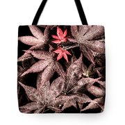 We All Have A Twin Soul Out There Tote Bag