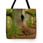 We Are Here Since 1000 Years 2 Tote Bag