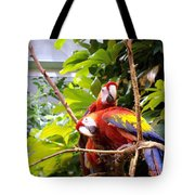 We Are Ready For Pictures Tote Bag