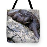 We Otter Snuggle Up Tote Bag