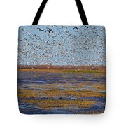 We Thought They Would Never Leave Tote Bag