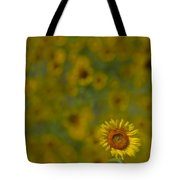 We Worship The Sun Tote Bag