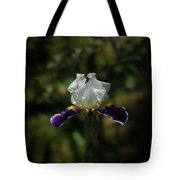 Wearing Purple Today Tote Bag