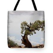Weatherbeaten Juniper Tote Bag