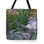 Weathered Cedar Overlooking The Castor River Tote Bag