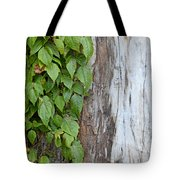 Weathered Tree Trunk With Vines Tote Bag