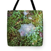 Web In Moss Tote Bag