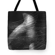 Web Of Legs Tote Bag