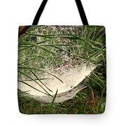 Web1 Tote Bag