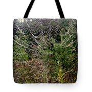 Web2 Tote Bag