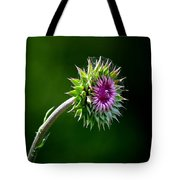 Webbed Thistle Tote Bag