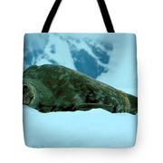 Weddell Seal Tote Bag