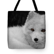 Wee Arctic Hunter D3613 Tote Bag by Wes and Dotty Weber