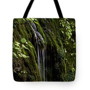 Weeping Rock Tote Bag