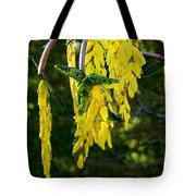 Weeping Tree Tote Bag