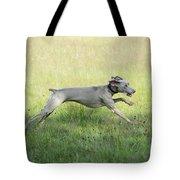 Weimaraner Dog Running Tote Bag