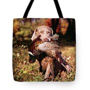 Weimaraner Hunting Dog Retrieving Ring Tote Bag