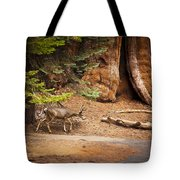 Welcome Home - Sequoia National Forest Tote Bag