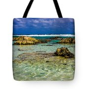 Welcome To Cozumel Tote Bag
