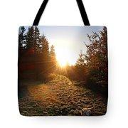 Welcoming Dawn Tote Bag