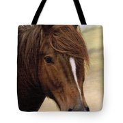 Welsh Pony Painting Tote Bag