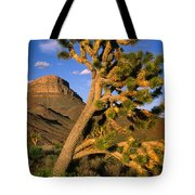 West Grand Canyon Tote Bag