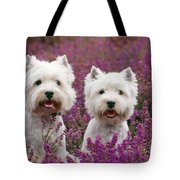 West Highland Terrier Dogs In Heather Tote Bag