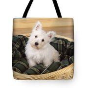 West Highland White Terrier Puppy Tote Bag